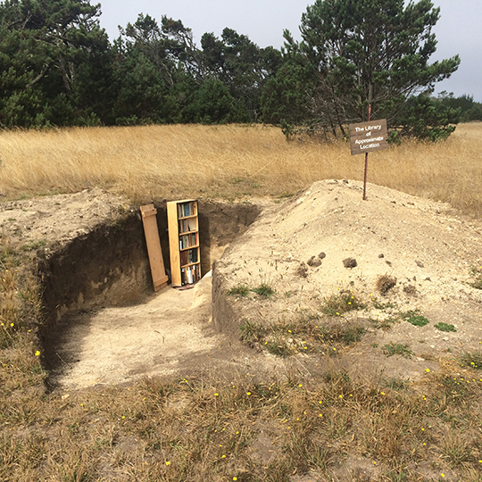 A library bookcase in the bottom of an angled hole dug into a field.