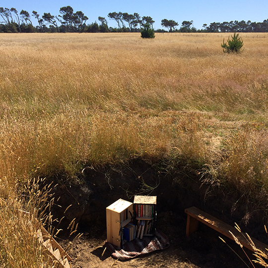 A library bookshelf sits at the bottom of a hole in the middle of a field.